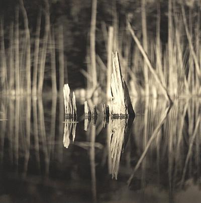 O'Neal Lake